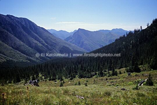 View from Blind-Tubby Pass, Bob Marshall Wilderness, Montana
