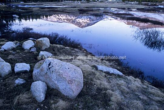 Reflection of Mount Dana in the Dana Fork of the Tuolumne River, Yosemite National Park, California, United States of America
