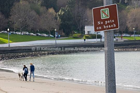 Two women walk a dog on the beach despite a sign that reads