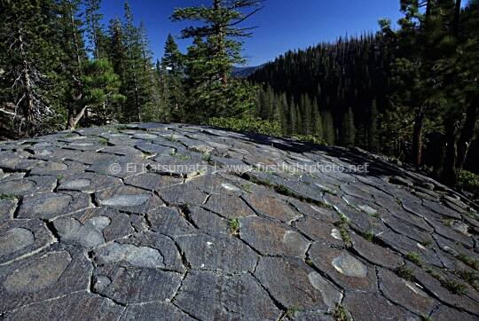 Glacially polished basalt columns, Devil's Postpile National Monument, California, United States of America